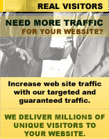Need more traffic for your website?